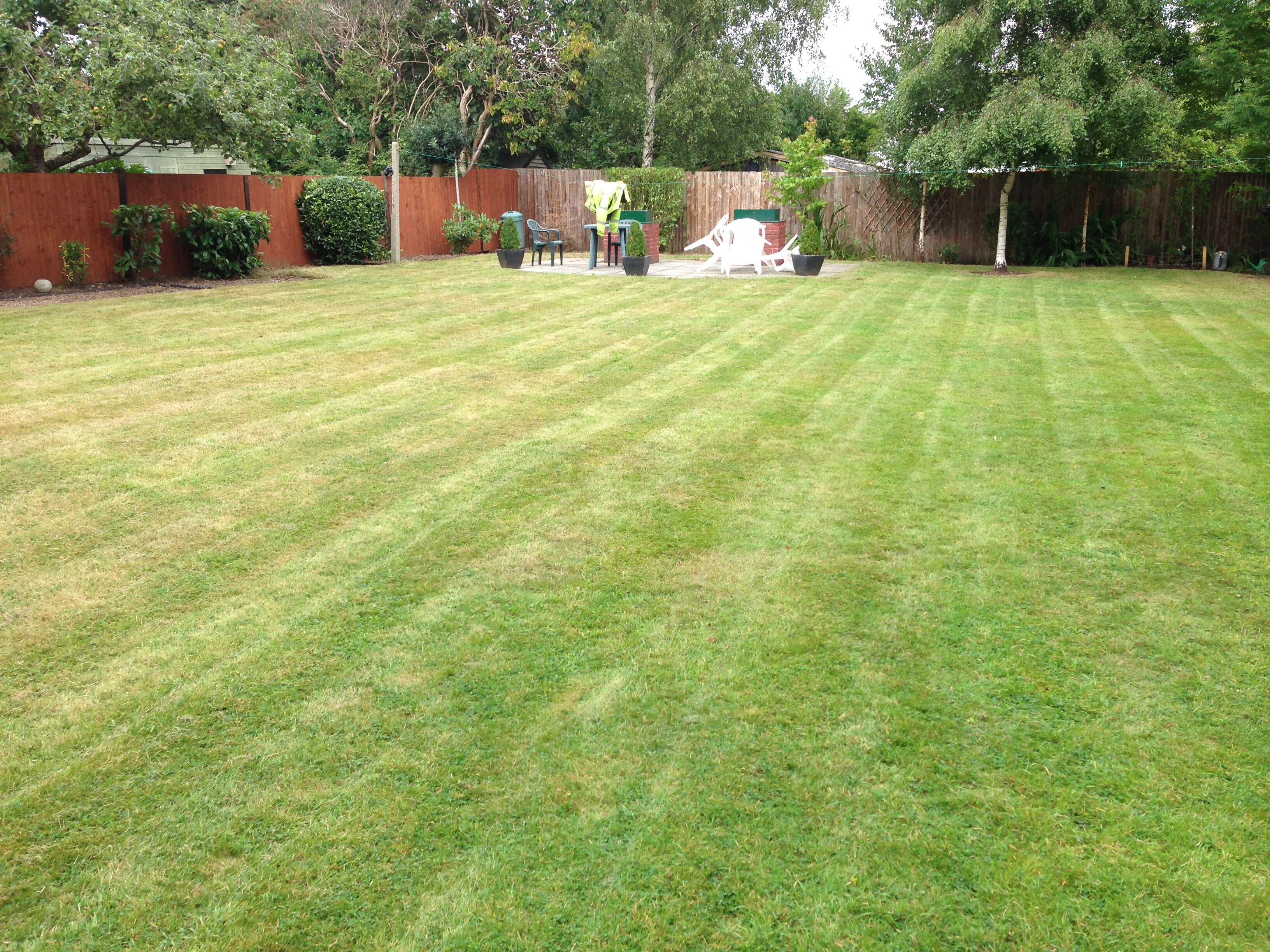 Gardener tree surgeon fencing garden services in for Tree and garden services